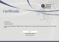 [2020] TSE - Busca Google